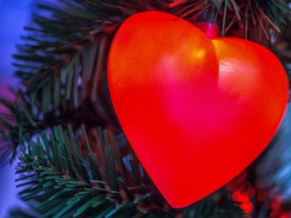 Weihnachtsmärkte zwischen Dom und Stadtgarten