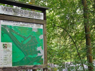 Königsdorfer Wald und Glessener Höhe