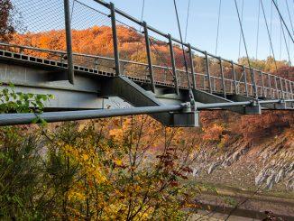 Herbst im Nationalpark Eifel